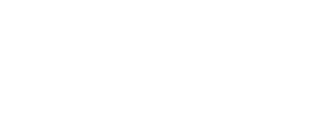 Saarland Logo weiß