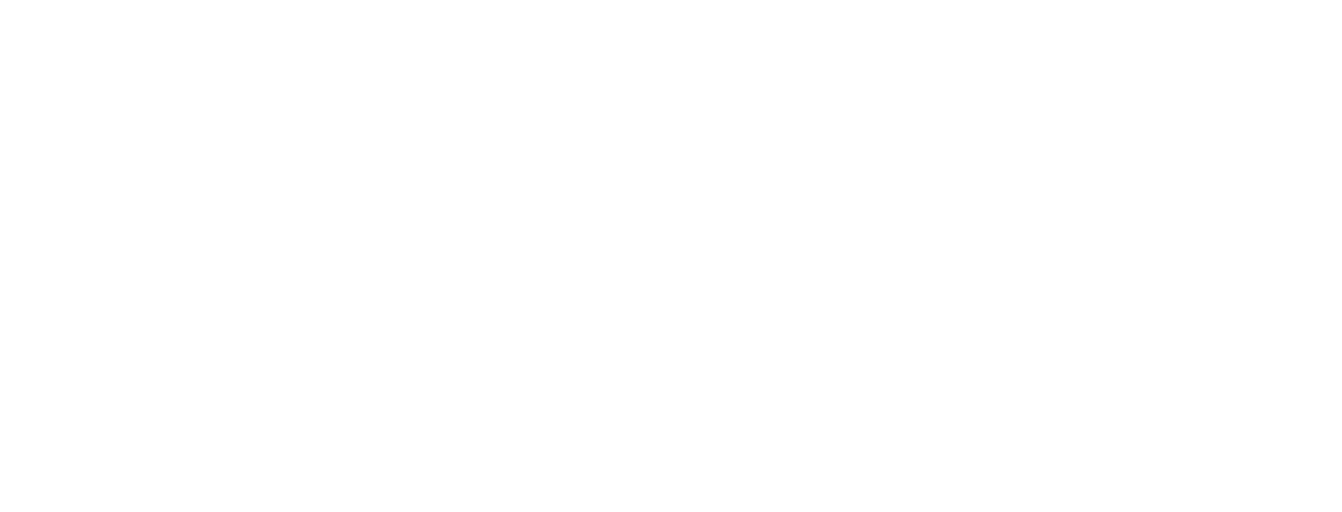 Saarland Logo weiß